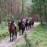 dzieci na koniach w lesie